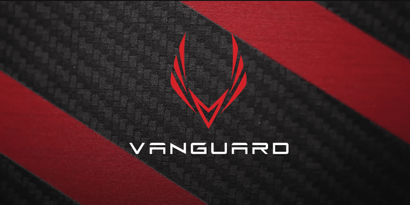 Vanguard Hybrid Pickleball Paddle